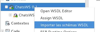 talend.webservice.wsdl17